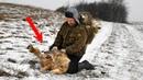 Волки РАССТУПИЛИСЬ перед ним, когда увидели, что он СДЕЛАЛ с их волчицей и волчонком