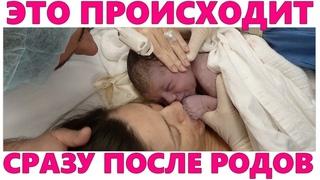 СРАЗУ ПОСЛЕ РОДОВ   Что происходит с мамой в первые 24 часа после родов