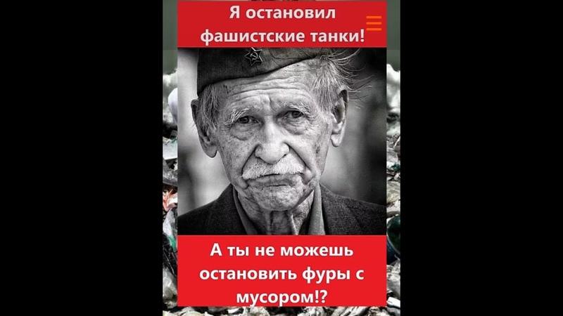 Противники свалки в Александрове сняли видео доказательства для губернатора.