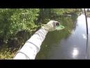 Разведка с джерками на малой реке.